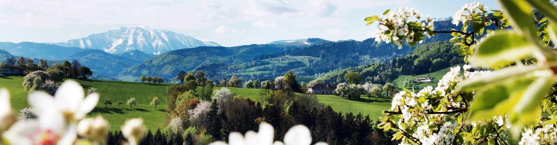 Ötscherblick © weinfranz RE/MAX Immo-Service Melk und Wieselburg, Martin Zehetner Immobilien
