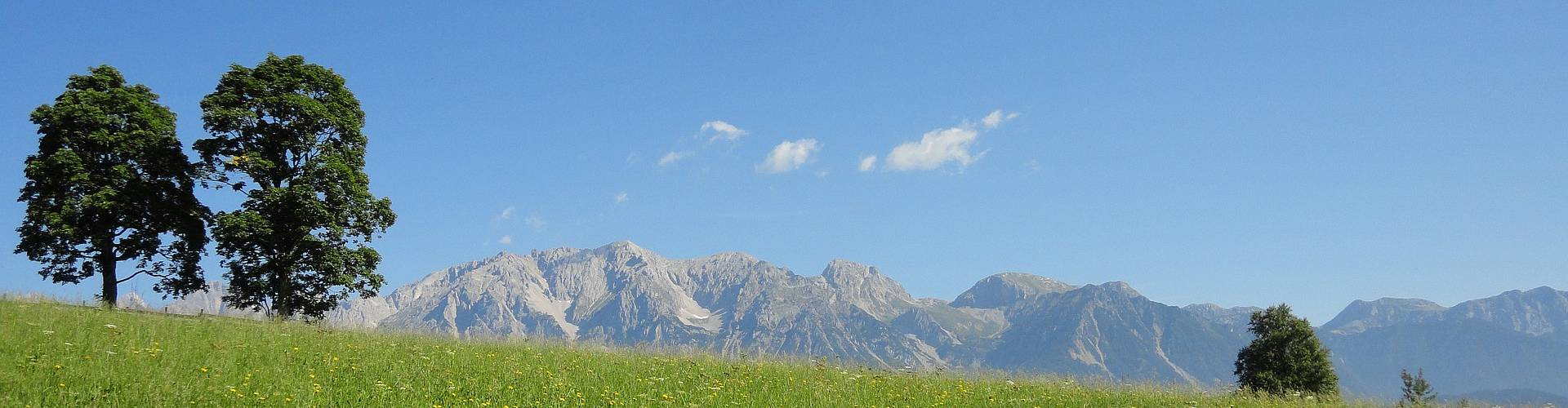 Immobilien - RE/MAX Nature 2