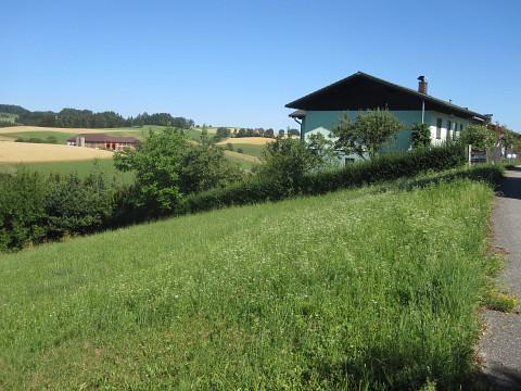 Baugrund in der Naturparkgemeinde Rechberg!
