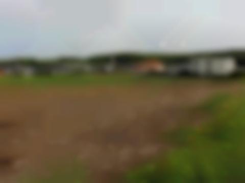 Baugrund Eigenheim in St. Martin im Innkreis