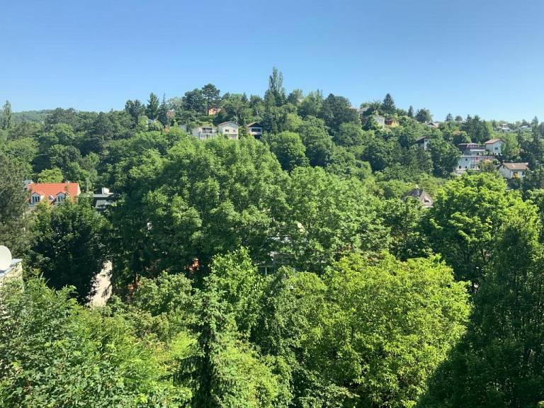 Blick von der Terrasse - Wohnung in Wien zu mieten