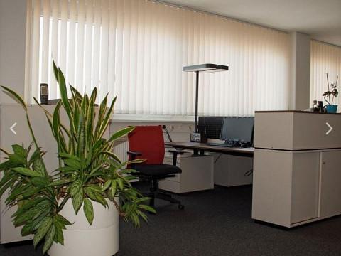 Büro in Brunn am Gebirge